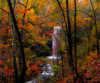 Cornelius Falls, Arkansas - Fall 2009