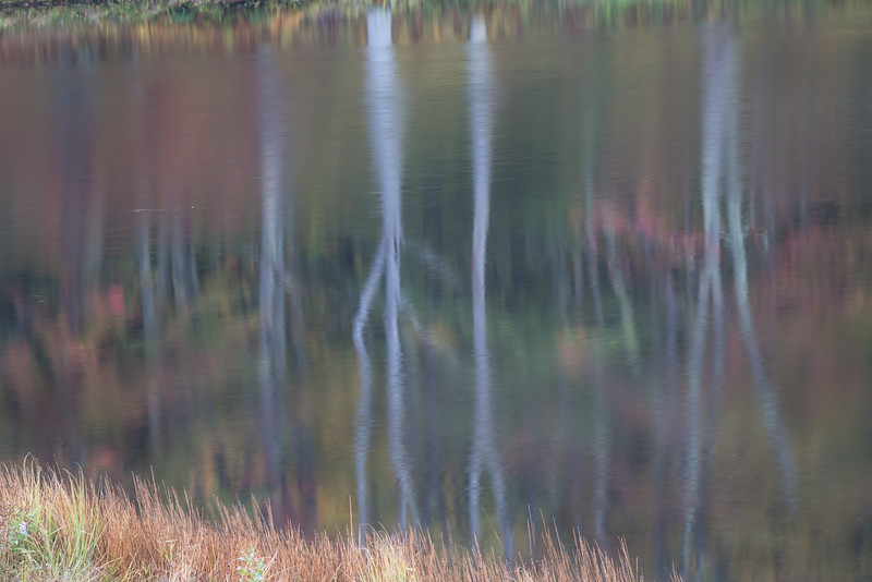Mirror Lake Abstract