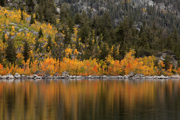 Fall Reflection at Lake Sabrina