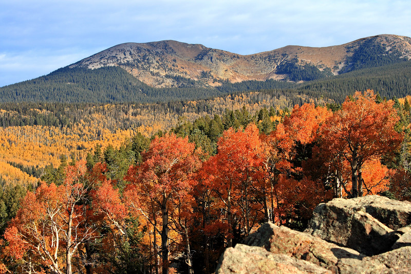 October 2007 color in the Pecos Wilderness