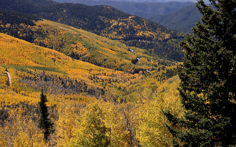 Aspen covered mountain from Santa Fe Ski Area
