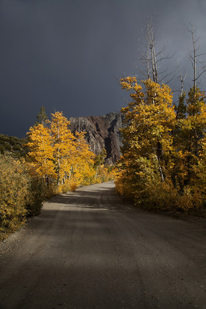 I pulled up to North Lake in the late afternoon to find a full parking lot from all of the Photogs working the lake. It began to rain and hail...The parking lot started to empty from the storm and I was able to park and wait for clearer skies.  In this image, A beam of light finds a gap in the storm clouds to highlight a few Aspen along North Lake Road in the Easter Sierra