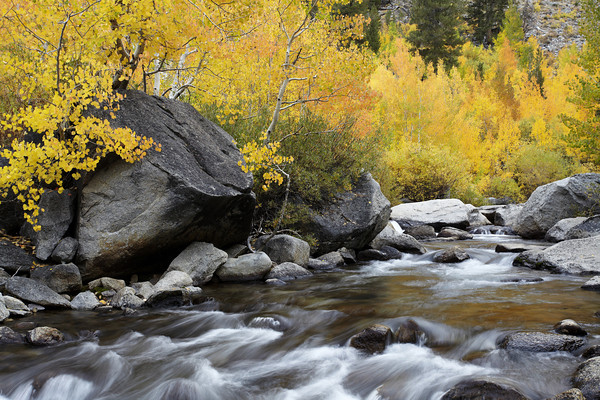Middle Fork Bishop Creek Canyon
