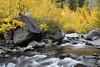 Middle Fork Bishop Creek Canyon