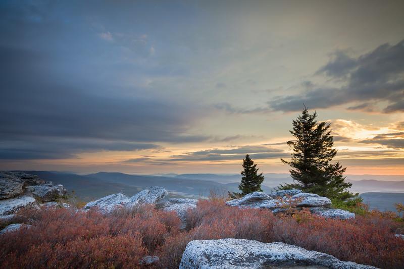 Bear Rocks Sunrise (IMG_9382)