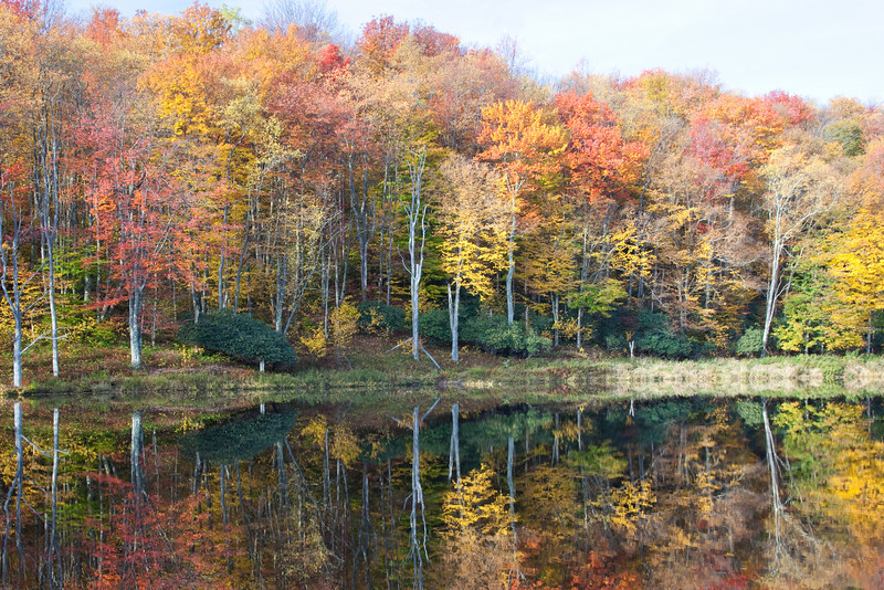 Mirror Lake<br /> Canaan Valley, WV<br /> (IMG_2062)