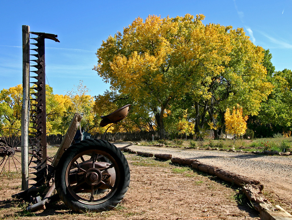 Fall in Galisteo, NM