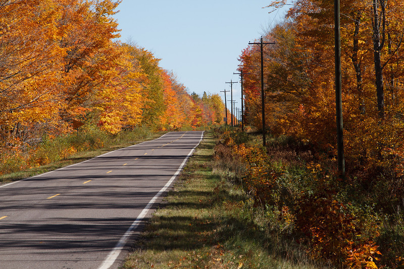 Fall color along the backroads of Keweenaw county.