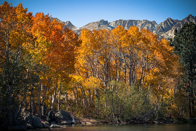 Fall foliage near 2nd Intake on the South Fork from Lake Sabrina.