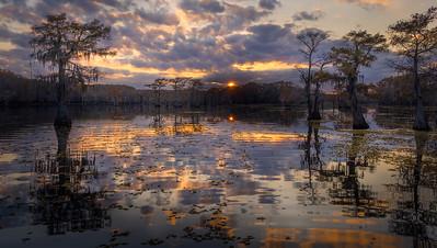 Caddo Lake, Fall foliage, Cypress Grove,  kayak