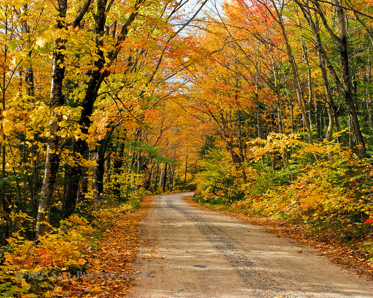 Road in Baxter State Park leading to Sandy Stream Pond.