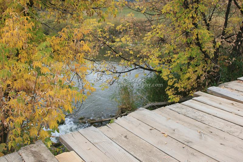 Wooden Bridge SS83301