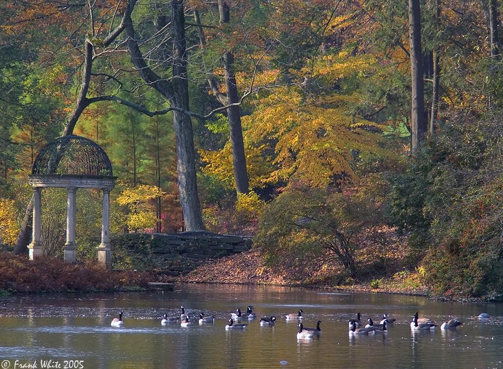 Fall colors & Gazebo #2, Longwood Gardens