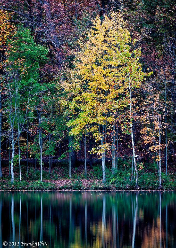 Fall colors at the lake, Great Seneca state park, Germantown, MD.