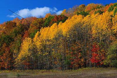 Fall Colors Loew Lake210