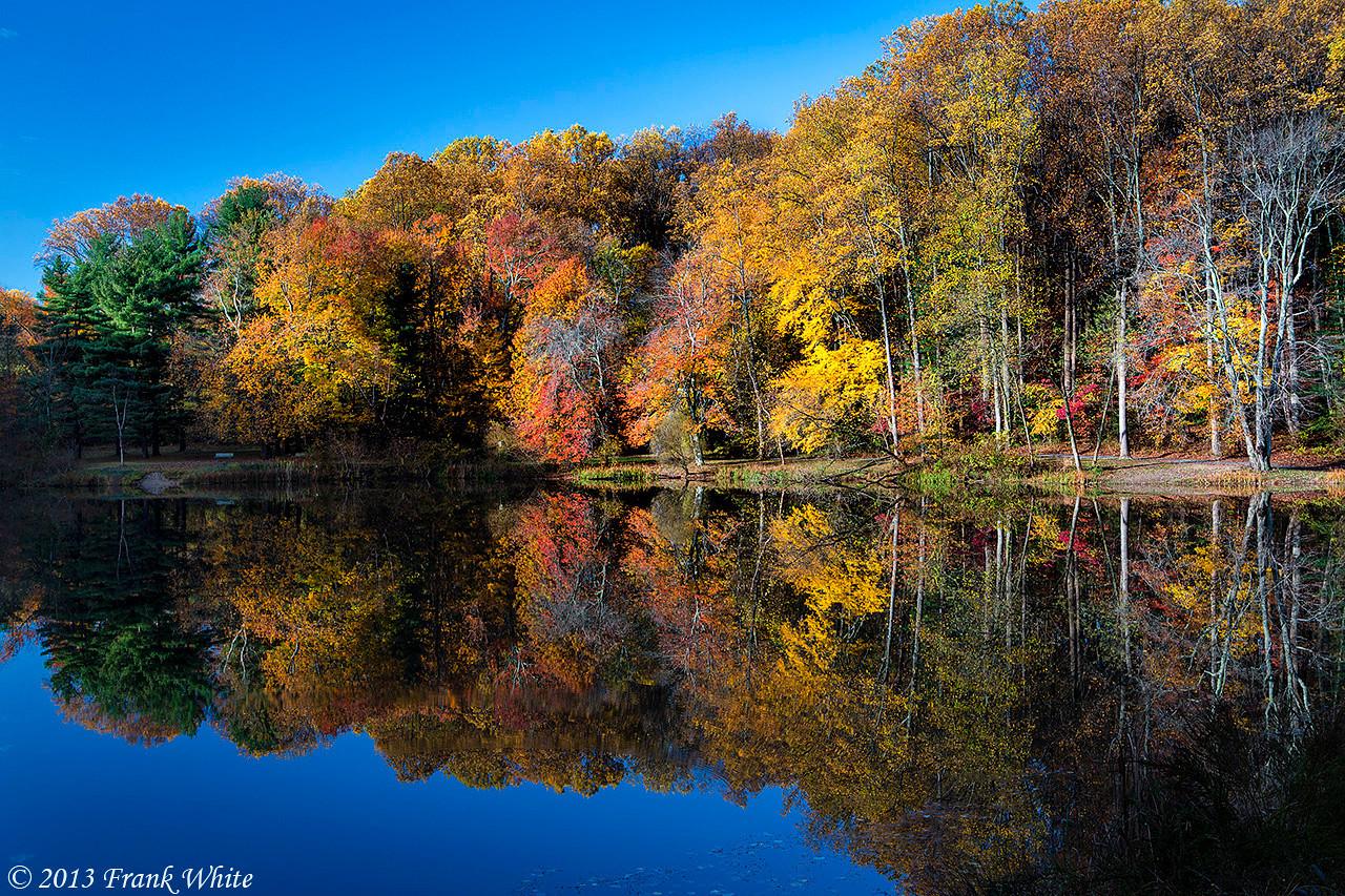 Fall reflection #2