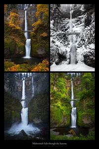 Multnomah Falls through the Seasons