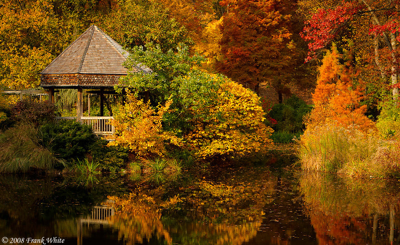 Fall at Brookside Gardens, Wheaton MD