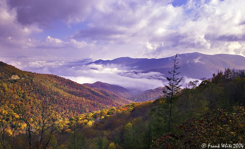 Foggy mountain valleys #9, Smoky Mountains, NC