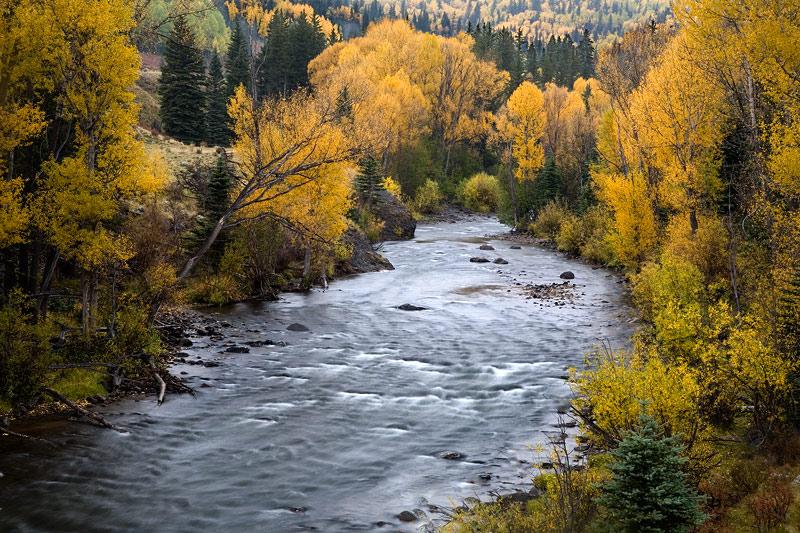 Misty Conejos River