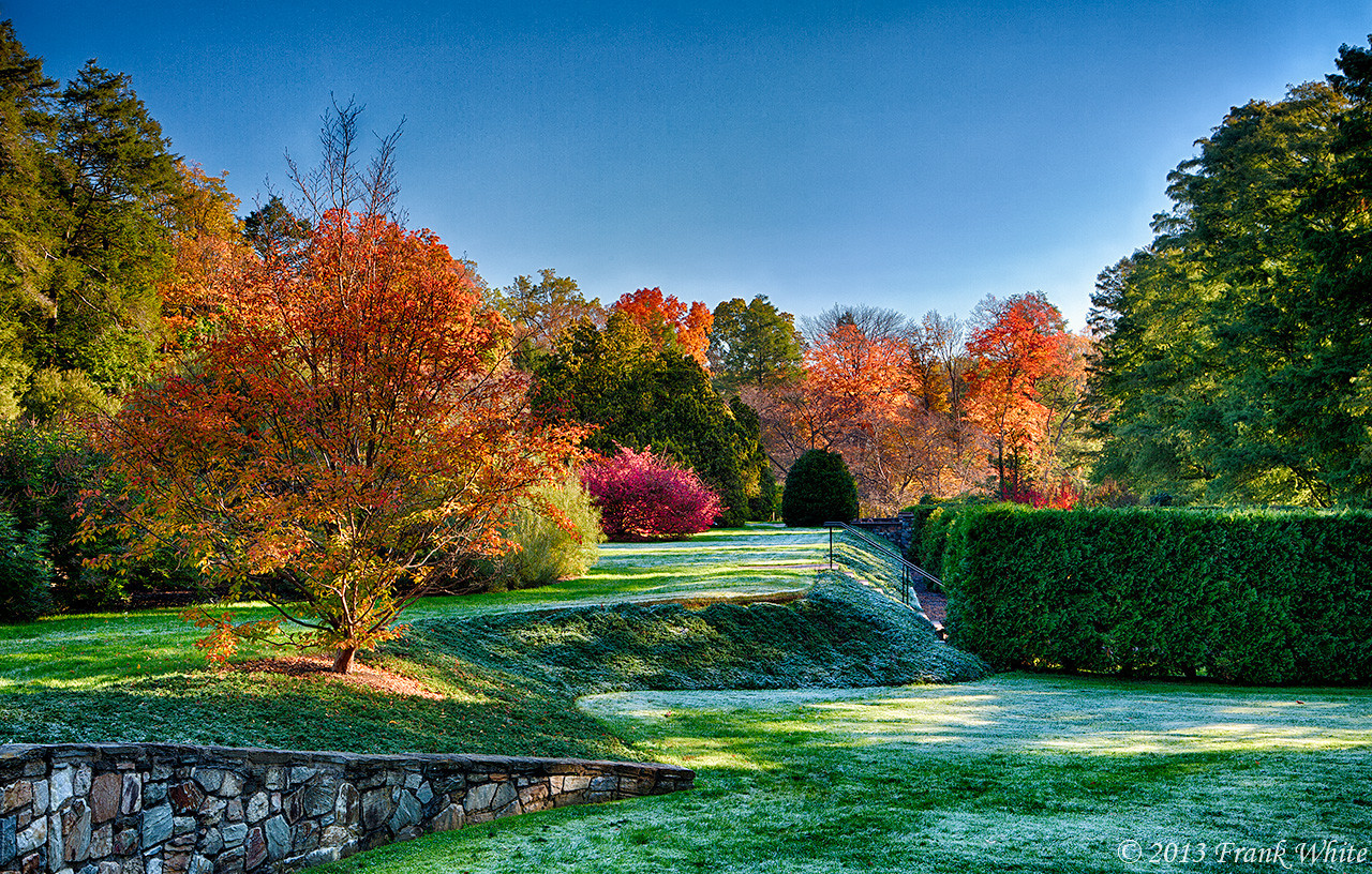 Frosty morning and fall colors