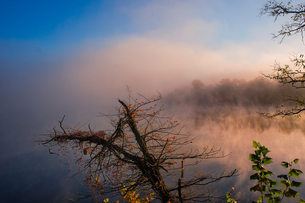 Autumn Mists