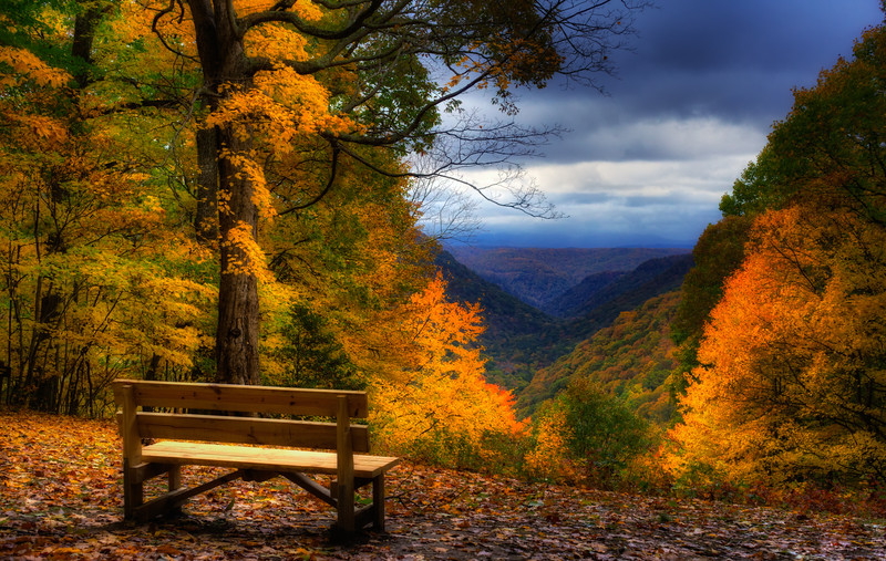 The Autumn Overlook