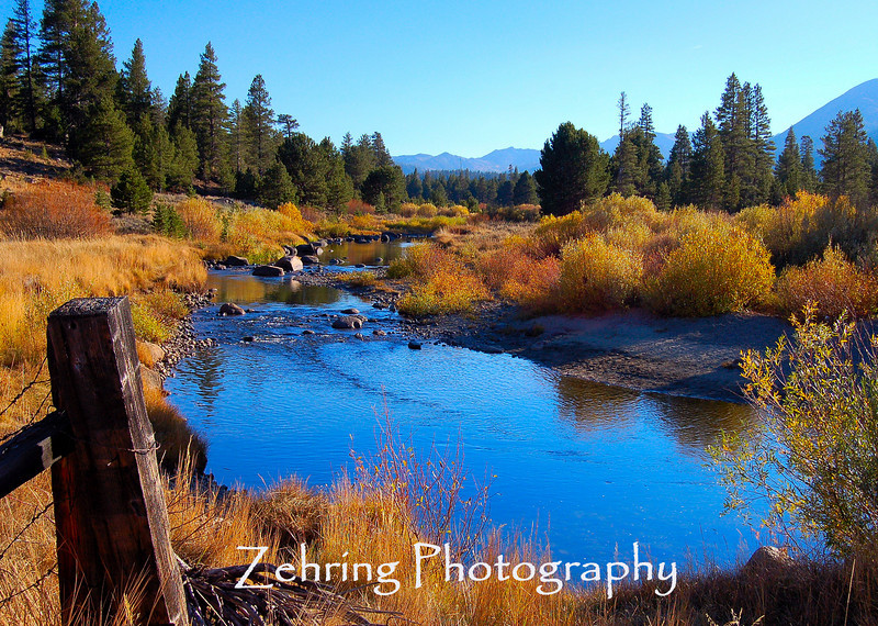 The magic of a late afternoon sun dramtically affects the color of this river scene as it runs through Hope Valley, California, about 45 minutes north of Lake Tahoe.
