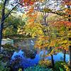 New Jersey, Fall 2009