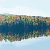 Lake Foliage