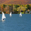 foliage and boats