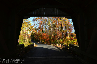 Looking outside the covered bridge in town of Jerusalem, Harford County, MD -- DSC_8915