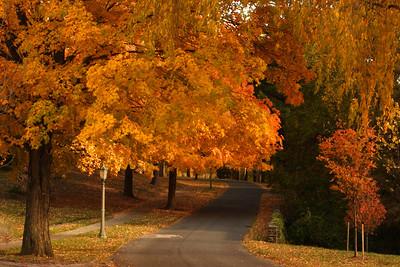 Fall at St. Mary's