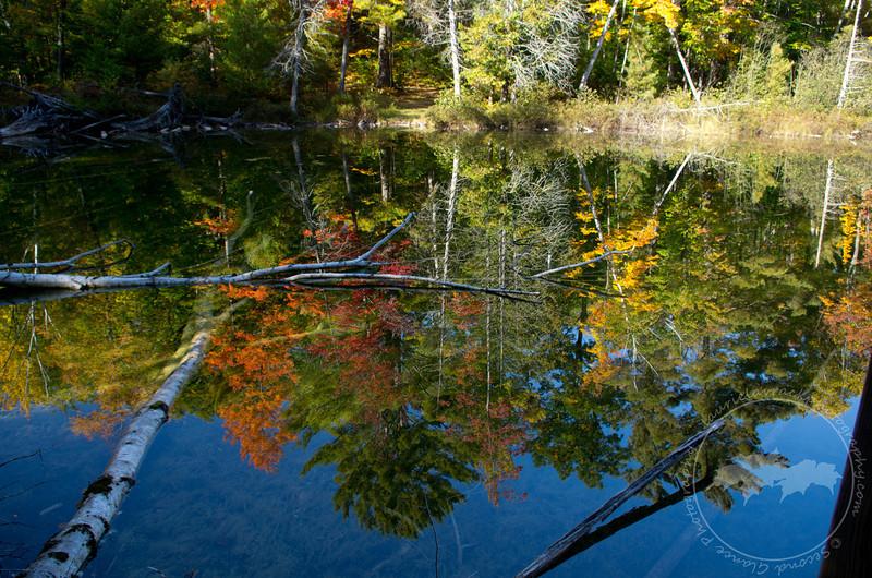 Ransom Lake, Benzie County, MI