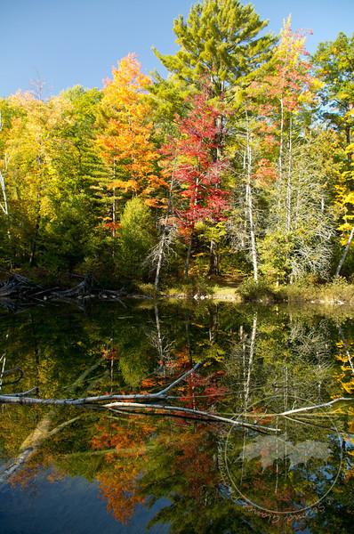 Watery Mirror-Ransom Lake, Benzie County, MI