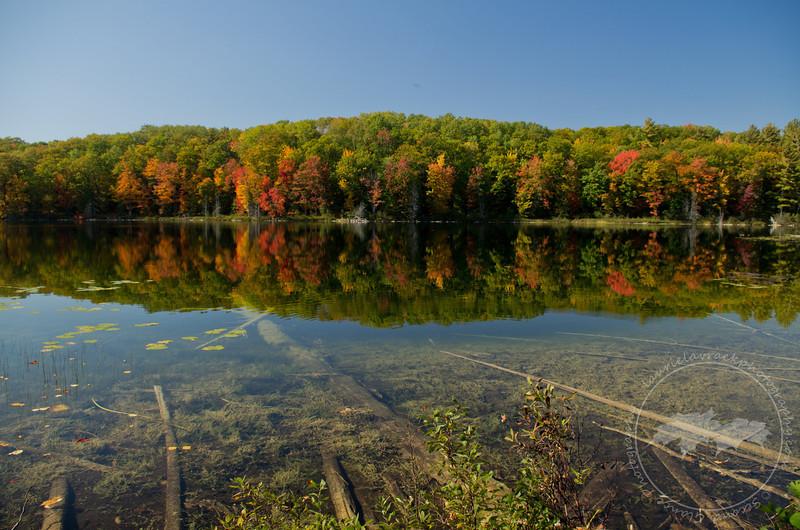What Lies Beneath- Ransom Lake, Benzie County, MI