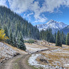 Colorado Forest Access Road