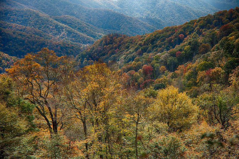On overlook  off of 441 between Cherokee and Gatlinberg.