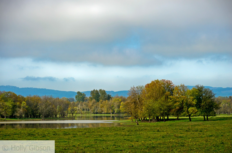 Sauvie Island in October