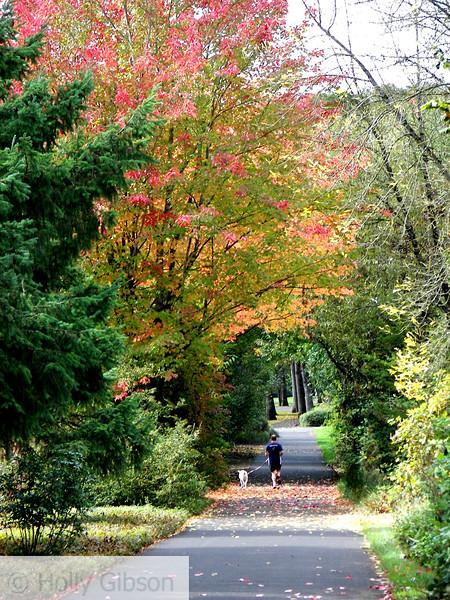 Fall Run