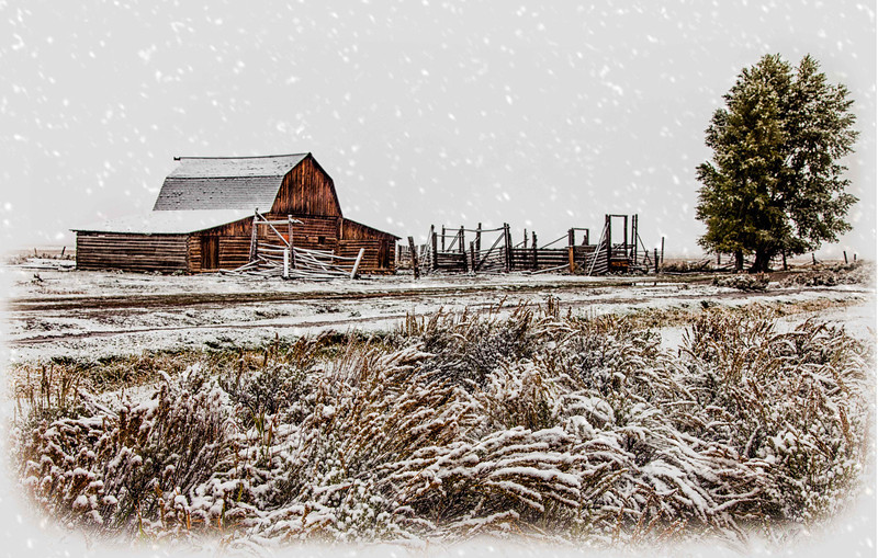 Taken off Mormon Road in the Grand Tetons.  I add a falling snow texture.  It actually was snowing when this was taken.  September 30,  2013.