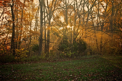 Sunrise Brown County State Park, near Nashville, IN.