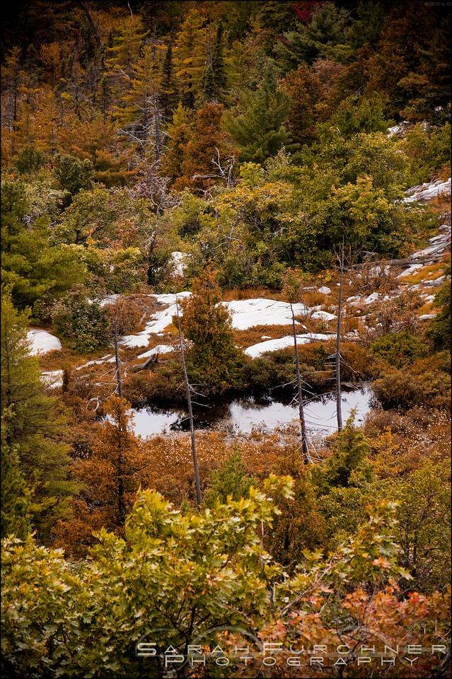 Silver Peak. Killarney Provincial Park, Ontario.