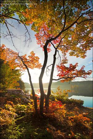 Grace Lake. Killarney Provincial Park.