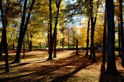 Park in Uxbridge