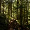 30  G Trail V