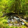 41  G Falls Creek