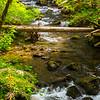 13  G Falls Creek V