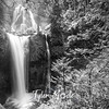 28  G Falls Creek Falls Rush BW