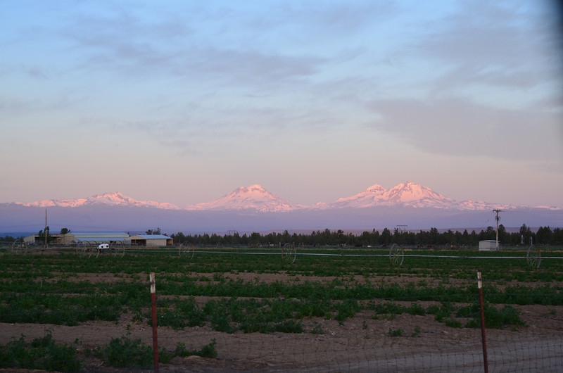The Three Sisters mountains overlook a farmers field in the early dawn